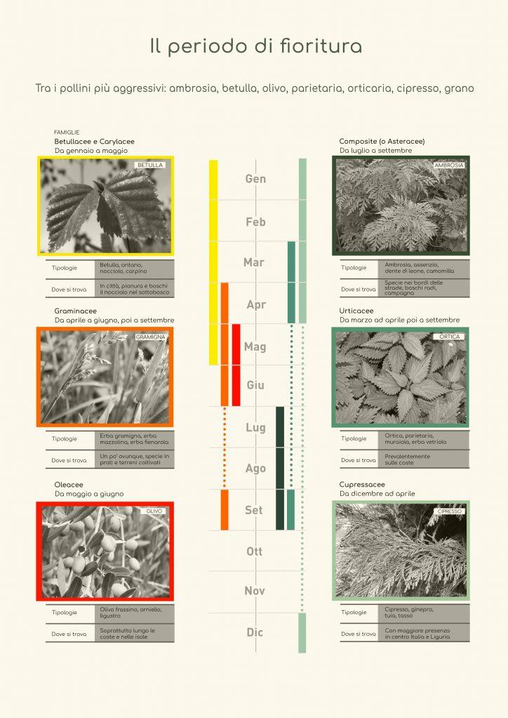 allergie calendario pollini
