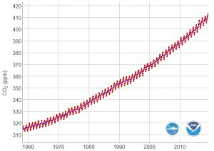 Serie Storica CO2 Mauna Loa