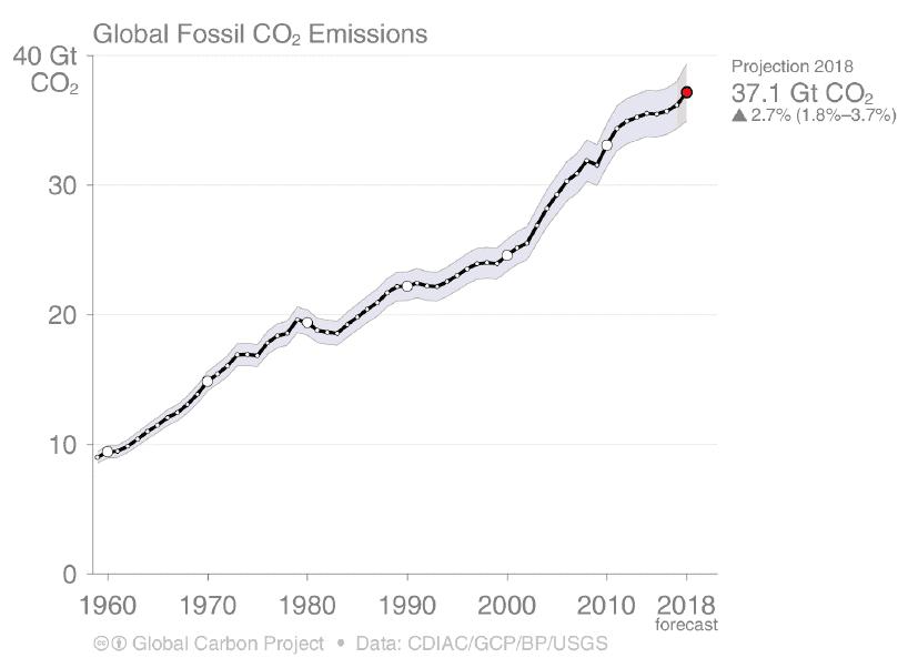 L'andamento temporale delle emissioni di CO<sub>2</sub>
