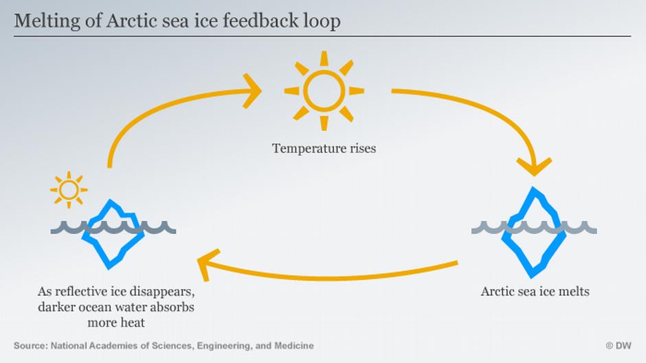 Schema di feedback relativo alla fusione del ghiaccio del Mar Artico