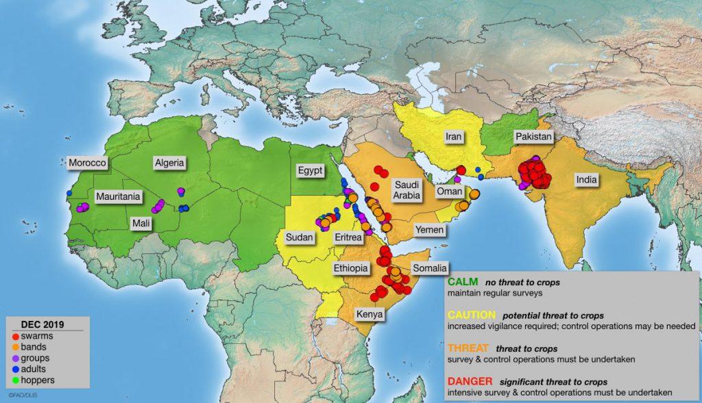 Cartina Yemen.Allarme Locuste In Africa In Kenya E La Peggiore Invasione Degli Ultimi 70 Anni Mappa E Video