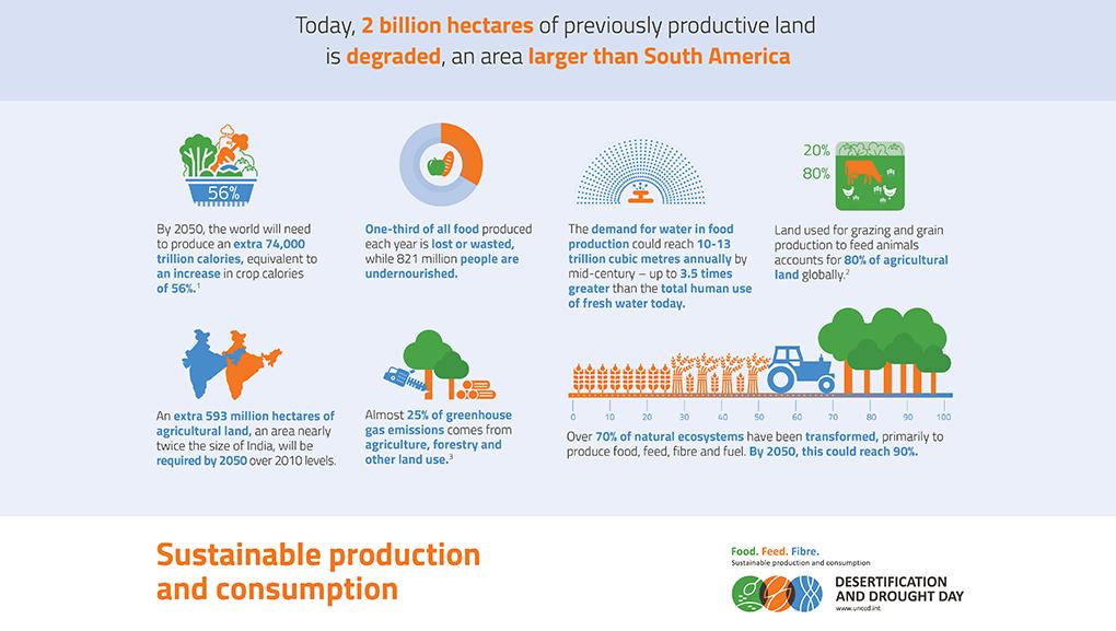 desertificazione e siccità - infografica