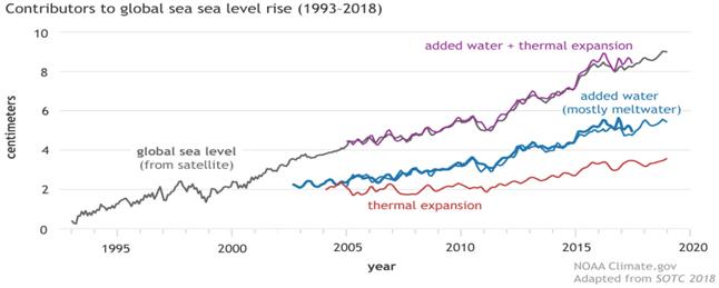 Aumento del livello medio dei mari: crescita vertiginosa di oltre 20 cm in  meno di 150 anni. Le stime future - Icona Clima