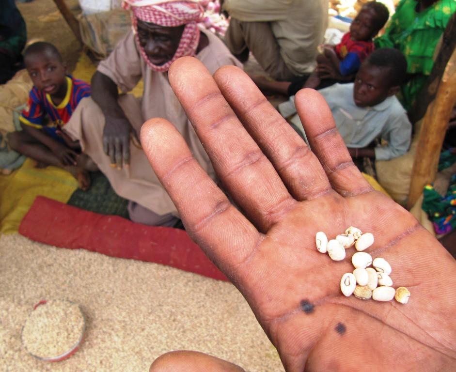 fame cibo agricoltura cambiamenti climatici africa