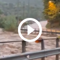 alluvione maltempo liguria savona