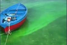 Posillipo, mare verde