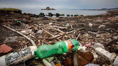 Greenpeace plastica mare
