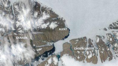 caldo assoluto canada alert nord del mondo