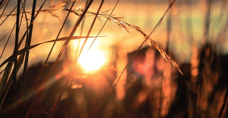 maggio giugno caldo sole