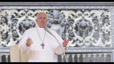 deforestazione Papa Francesco