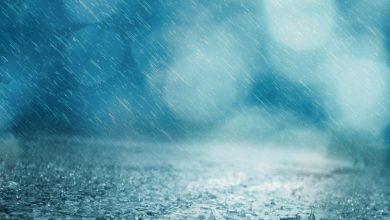 pioggia novembre 2019
