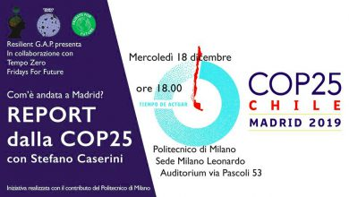 COP25 Fridays For Future Milano