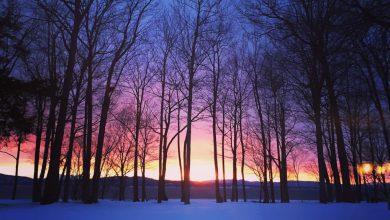 meteo gennaio