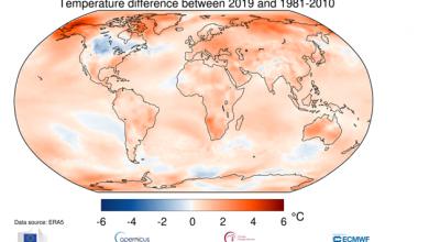 clima 2019 temperature