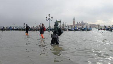 livello dei mari venezia marea
