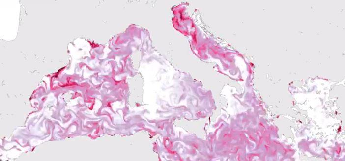 adriatico plastica mediterraneo inquinamento
