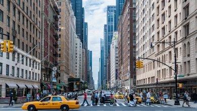 mose new york