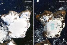 neve Antartide