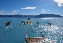 groenlandia antartide ghiaccio