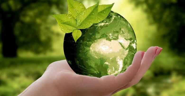 Ambiente, nasce l'Osservatorio sulla Sostenibilità: obiettivi e ...