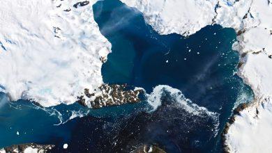 Antartide caldo