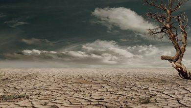 Siccità negli Usa: la peggiore degli ultimi 1200 anni