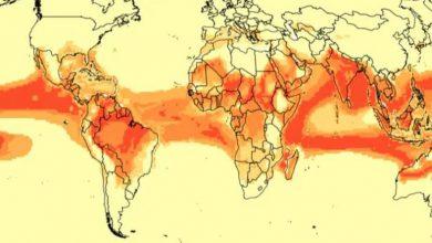 biodiversità cambiamento climatico