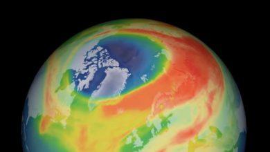 buco ozono artico