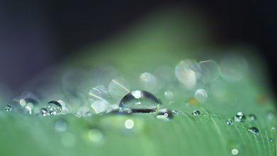 marzo pioggia