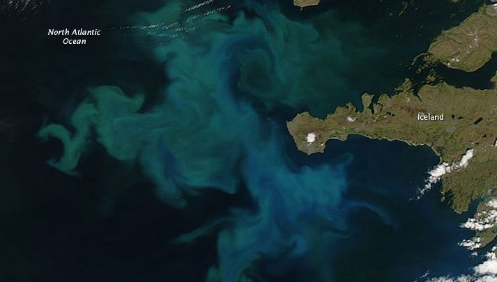 CO2 Nord Atlantico oceani
