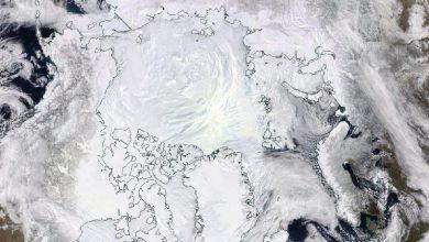 In 10 giorni la calotta artica ha perso un'area grande come Spagna e Portogallo