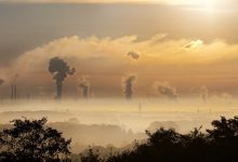 carbone australia