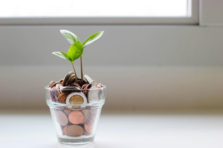 ripresa sostenibile