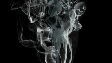 giornata senza tabacco fumo inquina