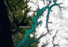 Un intero fiordo norvegese si tinge di color turchese