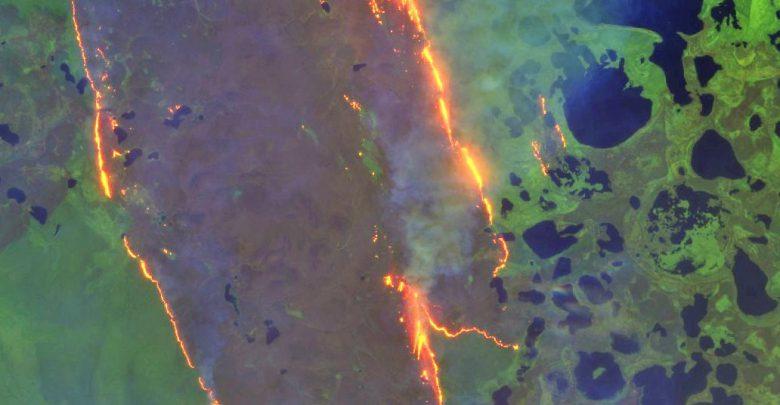 incendi artico siberia