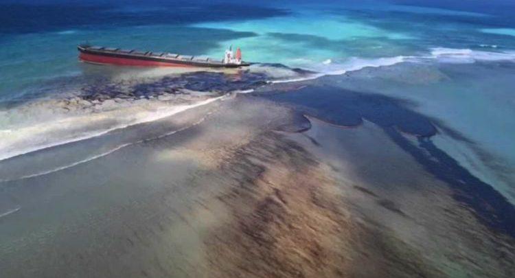 Vent'anni per ripulire le acque di Mauritius