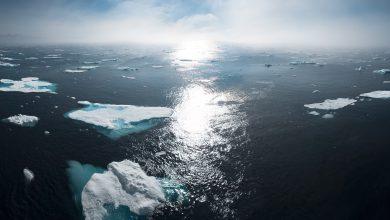 groenlandia ghiacci riscaldamento globale