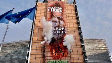 Incendi amazzonia UE greenpeace
