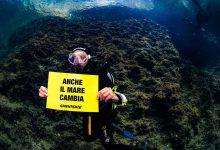 mare clima greenpeace