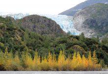 trump ambiente alaska
