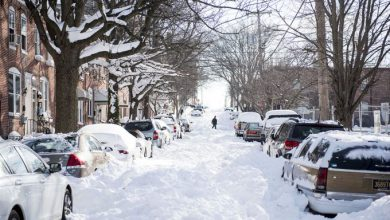 stati uniti neve