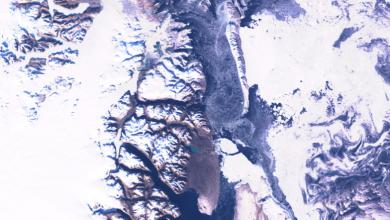 Artico ghiacci