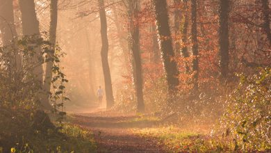clima autunno novembre