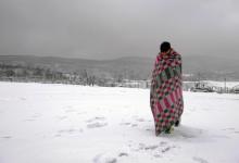 Lipa Bosnia gelo