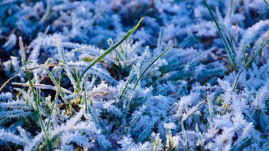 meteo freddo gelo ghiaccio