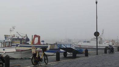caligo Napoli