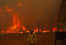 Australia incendi clima