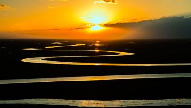 biodiversità fiumi