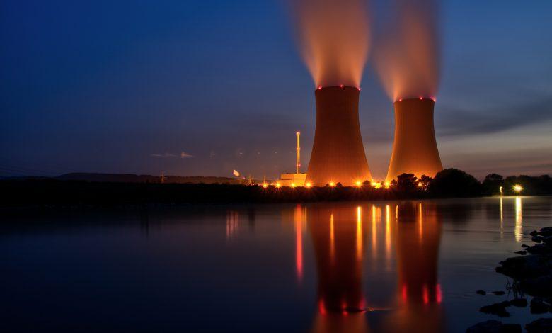 tassonomia nucleare